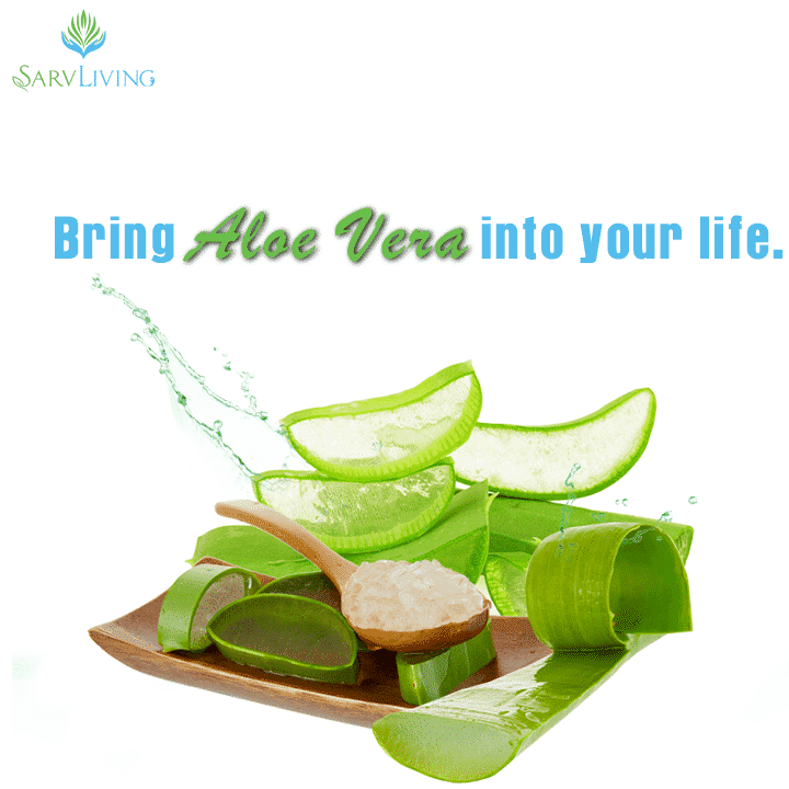 aloe vera products can help you with many things - 720 x 720