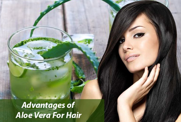 Uses of Aloe Vera Juice For Hair
